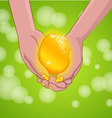 Gold Easter egg on hands vector image vector image
