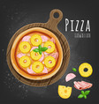 hawaiian pizza vector image