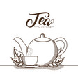 natural tea drink vector image vector image