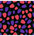raspberries and blackberries fruit summer seamless vector image