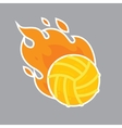 Volleyball isolated team icon vector image