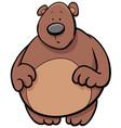 bear animal cartoon character vector image vector image