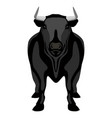 front view of a bull farm animal vector image