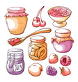 fruit and berry jam hand drawn set vector image vector image