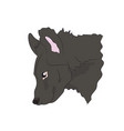 hyena portrait vector image