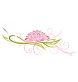 lotus floral element vector image vector image
