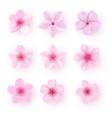 realistic pink sakura petals icon set cherry vector image vector image