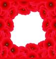 red corn poppy border vector image