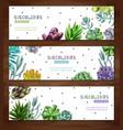 succulent plants horizontal banners vector image vector image