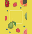 template card with white border and fruits vector image