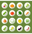 Vegetables Icons Flat Set vector image vector image