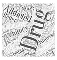 whitney houston drug addiction word cloud concept vector image vector image