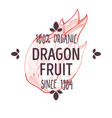 100 percent organic dragon fruit label with vector image vector image