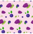Blackberries and blueberries background vector image