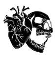 drawn cartoon skull with hearts love skull head vector image vector image