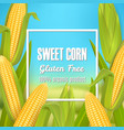 sweet corn poster label sticker template vector image vector image