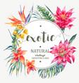 vintage floral tropical round frame vector image vector image