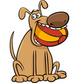 dog with ball cartoon vector image