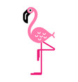 flamingo on one leg vector image vector image