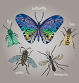 Insects Bee Beetles Mosquito color vector image vector image
