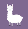 llama alpaca cute cartoon funny kawaii baby vector image