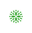 organic green isolated logo leaves logo vector image