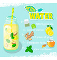 recipe for detox cocktail with green tea vector image vector image