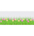 spring floral border with colorful tulips on green vector image vector image