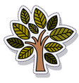 tree plant ecology isolated cion vector image