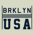 usa brooklyn vector image vector image