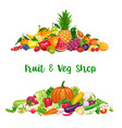 vegetables and fruit banner vector image vector image