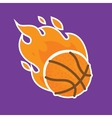 Basketball team icon template isolated vector image vector image