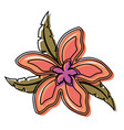 flower with petals salmon vector image vector image