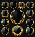 gold and black shield and laurel wreath collection vector image