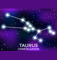 taurus constellation starry night sky cluster of vector image vector image