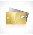VIP Cards gold and silver vector image vector image