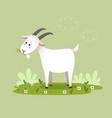 a cartoon goat eating grass vector image