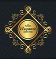 elegance style golden frame vector image vector image