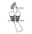exotic bird cartoon in black and white vector image vector image
