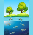 fish in the river vector image vector image
