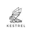 kestrel bird geometric outline polygonal logo icon vector image vector image