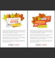 limited time only buy now discount promo coupons vector image vector image