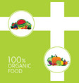 organic fruit and vegetable illutration vector image