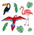 Set of tropical birds and palm leaves vector image vector image