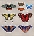 set with butterflies isolated on white background vector image vector image