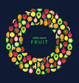 set with summer fruits vector image vector image