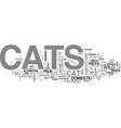a short history of cats text word cloud concept vector image vector image