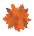 background autumn brown leaves foliage vector image vector image