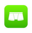 boxers underpants icon green vector image vector image