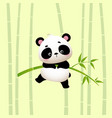 cartoon panda hanging on bamboo trees vector image
